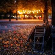 Höst stolar vid träd ljus